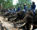 Foto: Lampang Elephant Conservation Center