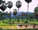 Thailand Mukdahan Hotel Reservation +  Mukdahan Tourist Information