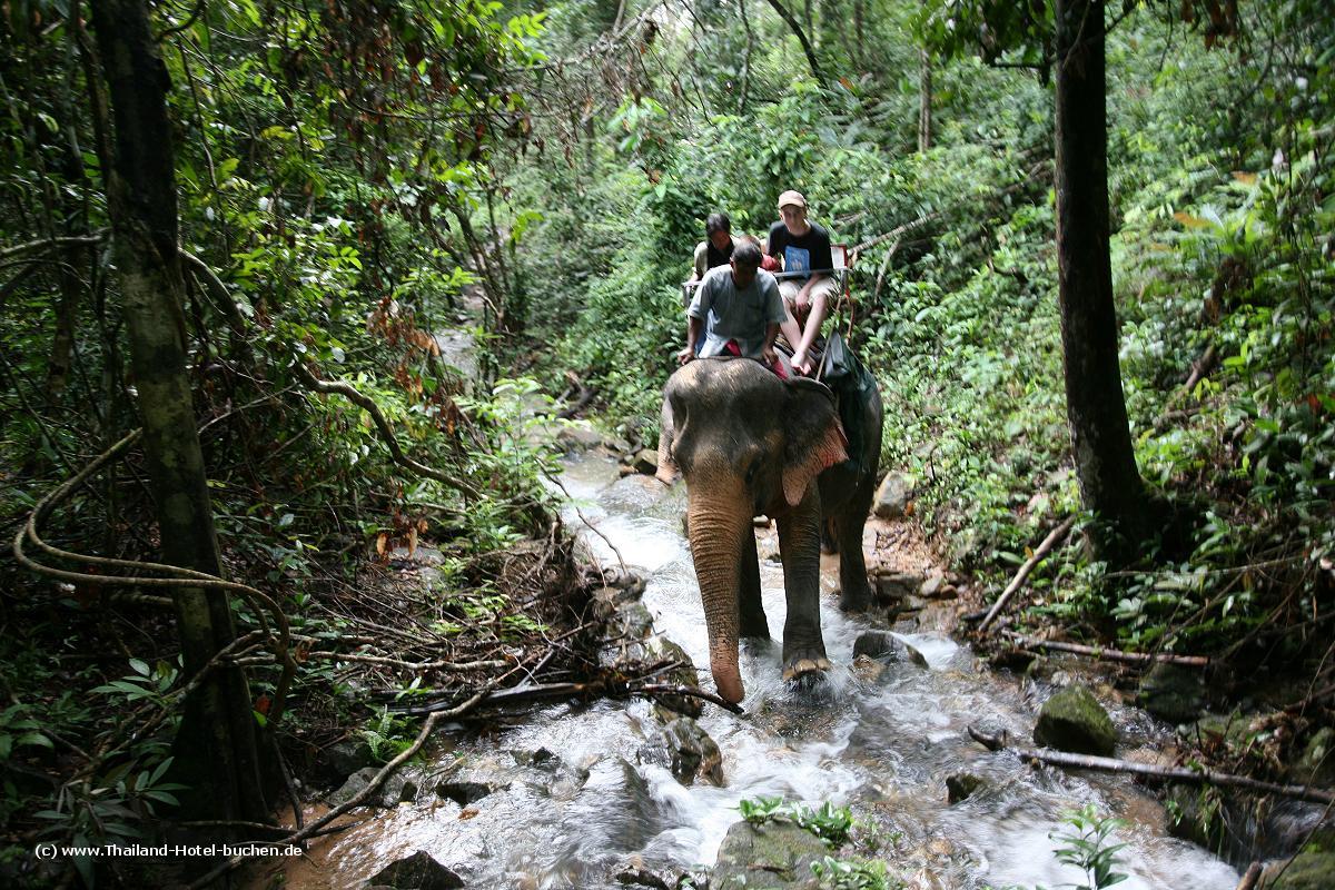 Thailand Elefantenreiten auf Koh Chang