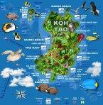 Karte Koh Tao ( Map )