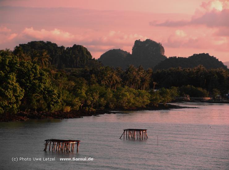 Foto: Surat Thani - S�d Thailand